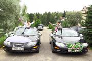 Свадьба Витебск   Новополоцк  Полоцк Глубокое Миоры Верхнедвинск