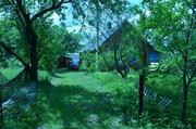 Жилой дом с хозпостройками,  д. Городец Ушачского р-на